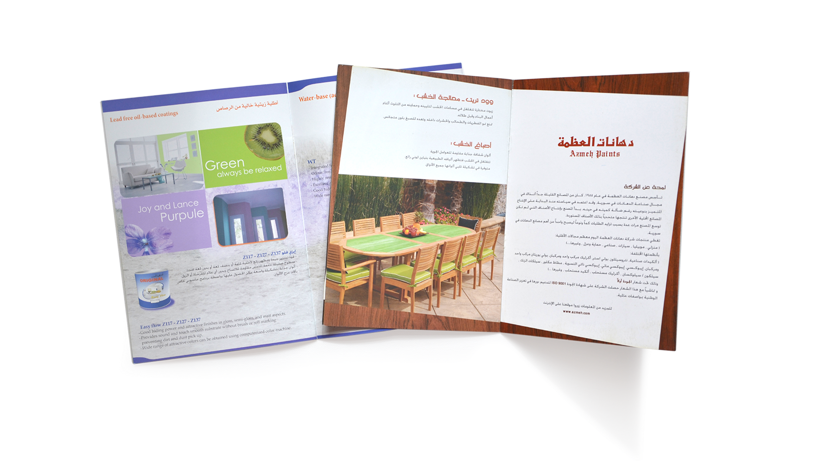 Nour, Alnader, Portfolio, Katalog, Broschüre, Azmeh, Paint, Gestaltung, Layout, Info Grafik, Design, Illustration